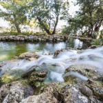 3059 dalmatian ethno village lake